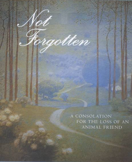 Not Forgotten book cover